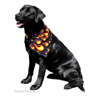 Spandex Flame Pet Bandana