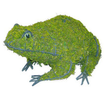 Frog Mossed Topiary