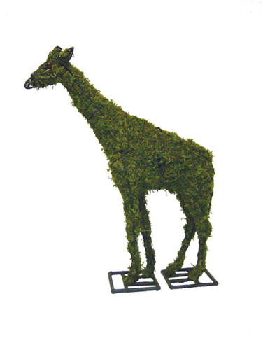 Mossed Giraffe Topiary Garden Sculpture