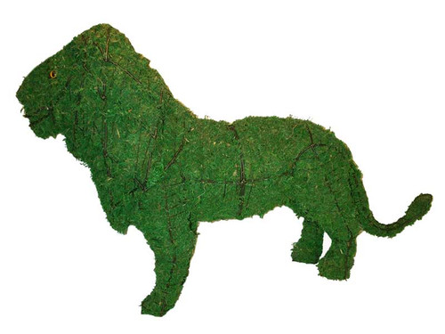 Mossed lion garden topiary