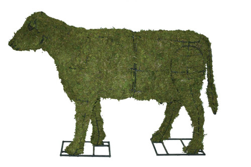 Cow Calf 24 Inch Mossed Topiary Garden Sculpture arrives in sections and has steel mounting plates the front & back legs for secure anchoring.
