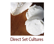Direct Set Cheese Cultures (Starters)