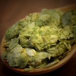 Whole Flower Hops - U.S. Goldings