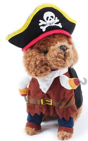 Dog Pirate Fancy Dress Costume 1
