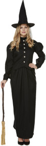 Ladies Classic Witch Fancy Dress Costume 1