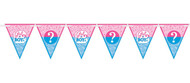 Gender Reveal Party Bunting