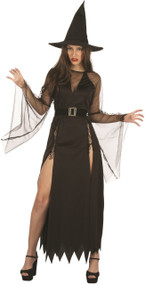 Ladies Classic Sultry Witch Fancy Dress Costume