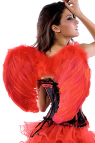 Ladies Red Feather Angel Wings