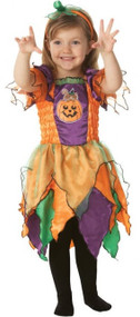 Girls Pumpkin Witch Fancy Dress Costume