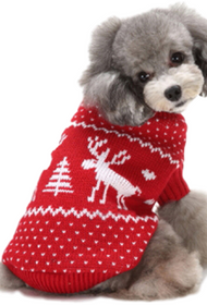 Dog Red Festive Sweater