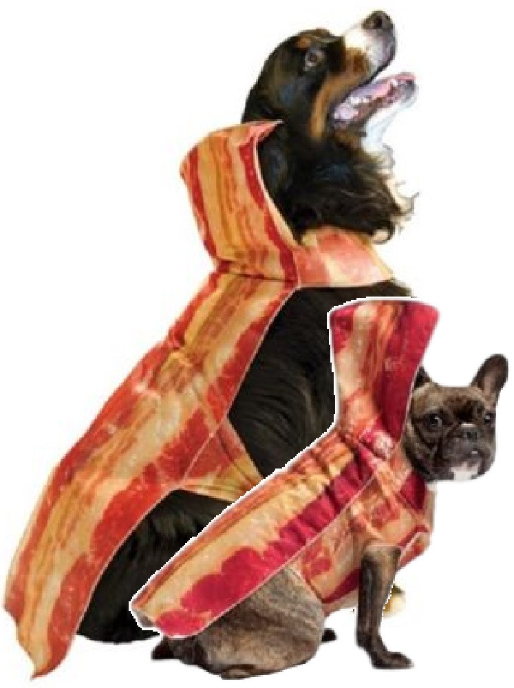 Dog Bacon Fancy Dress Costume. Image 1  sc 1 st  Fancy Me Limited & Dog Bacon Fancy Dress Costume - Fancy Me Limited