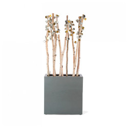 Birch Poles with Gold & Silver Cube/ Pivot Wall Play in Pewter Fiberglass Planter