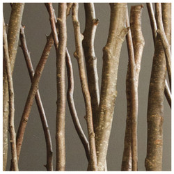 Natural Alder Poles - 6'L - Set of 12