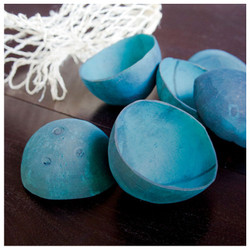 Coconut Shells,Turquoise - Set of 12