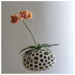 Sponge Sculpture Hanging Planter - Set of 2