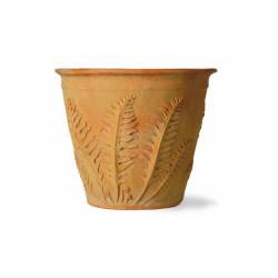 Capital Garden Fern Pot