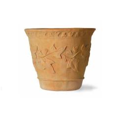 Capital Garden Ivy Pot