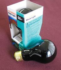 Black Light (Black Light = Long Wave UV or Ultraviolet A)