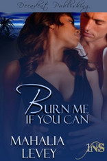 Burn Me If You Can (1Night Stand)