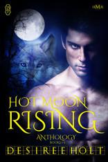Hot Moon Rising Anthology
