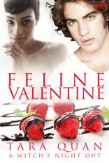 Feline Valentine (1Night Stand)