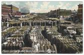 Macon, Georgia Postcard:  Cotton Scene on Popular Street