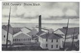 Blaine, Washington Postcard:  A.P.A. Cannery