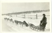 Alaska Dog Team Real Photo Postcard