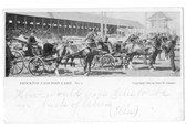 Brockton, Massachusetts Postcard:  Brockton Fair Post Card No. 5 Harness Racing