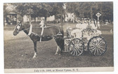 Mount Upton, New York Real Photo Postcard:  July 4, 1909 Parade Float