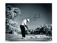 "TIGER WOODS AUTOGRAPHED ""CONTACT"" 16 X 20 UDA LE 100"