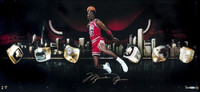 "MICHAEL JORDAN Signed ""City Of Rings"" 30 x 15 Photo UDA LE 123"