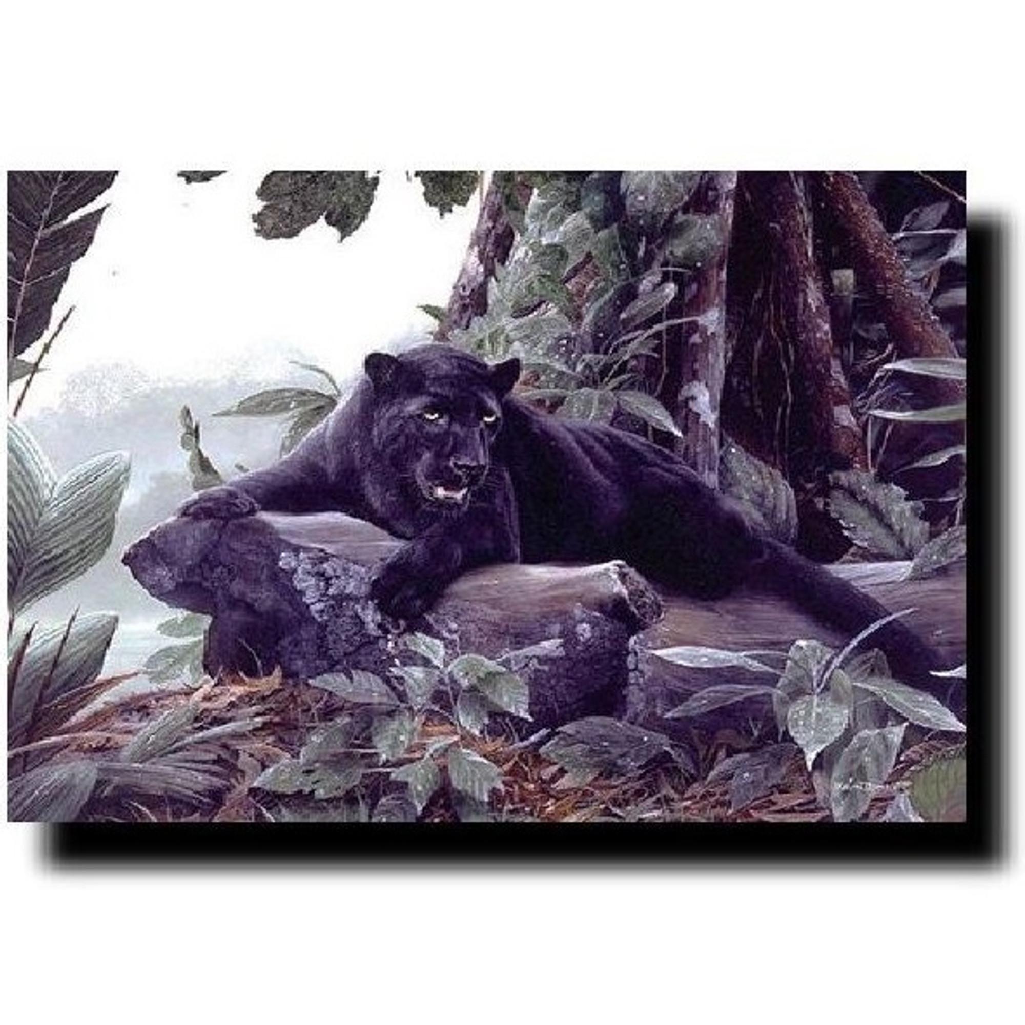 Black Panther Print Kevin Daniel Wildlifewonders Com