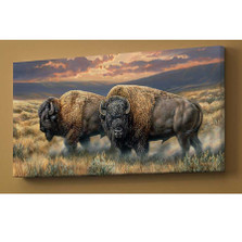 "Bison Canvas Wall Art ""Dusty Plains"""