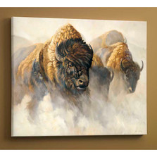 "Bison Canvas Wall Art ""Phantom of the Plains"""