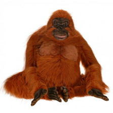 Orangutan Life-Sized Stuffed Animal