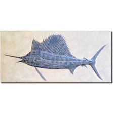 Sailfish Bas Relief Ltd Edition Wall Art