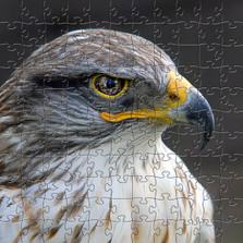 Eagle Eye Wooden Medium Jigsaw Puzzle