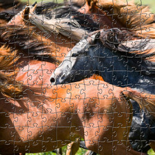 "Horse Wooden Jigsaw Puzzle ""Herd of Young Horses"""