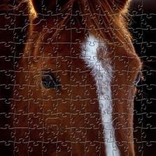 Horse Portrait Artisanal Wooden Jigsaw Puzzle | Zen Art & Design | ZADHORSEPORT