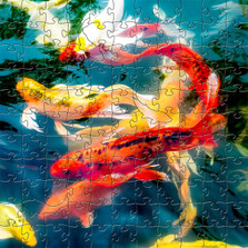 Koi Fish Wooden Jigsaw Puzzle