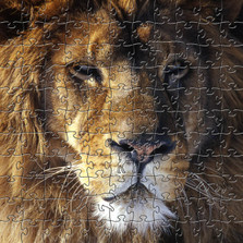 Lion Wooden Jigsaw Puzzle
