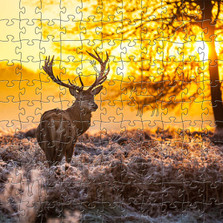 "Deer Wooden Jigsaw Puzzle ""Red Deer at Dawn"""