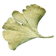 Gingko Pin | Nature Jewelry