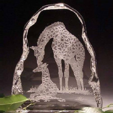 Giraffe and Baby Crystal Ice Block Sculpture