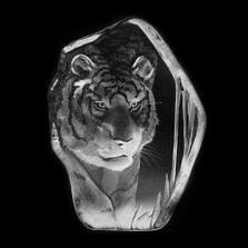 Large Tiger Crystal Sculpture | 33378