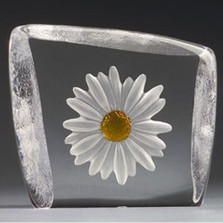 White and Yellow Daisy Crystal Sculpture | 33870