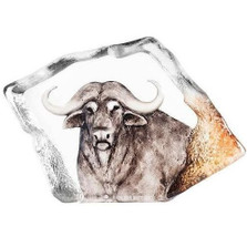 Cape Buffalo Crystal Sculpture | 34116