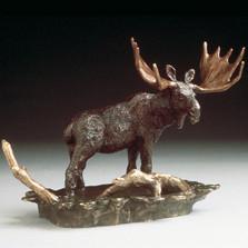 Moose Bronze Sculpture