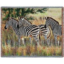 Three Zebra Group Tapestry Afghan Throw Blanket